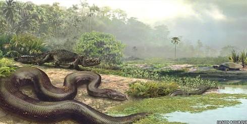 【转】令恐龙恐惧的远古蛇类 俗称地狱巨蛇泰坦蟒